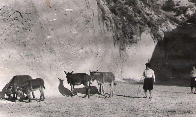 Las Cuevas del Cajón de Machalí