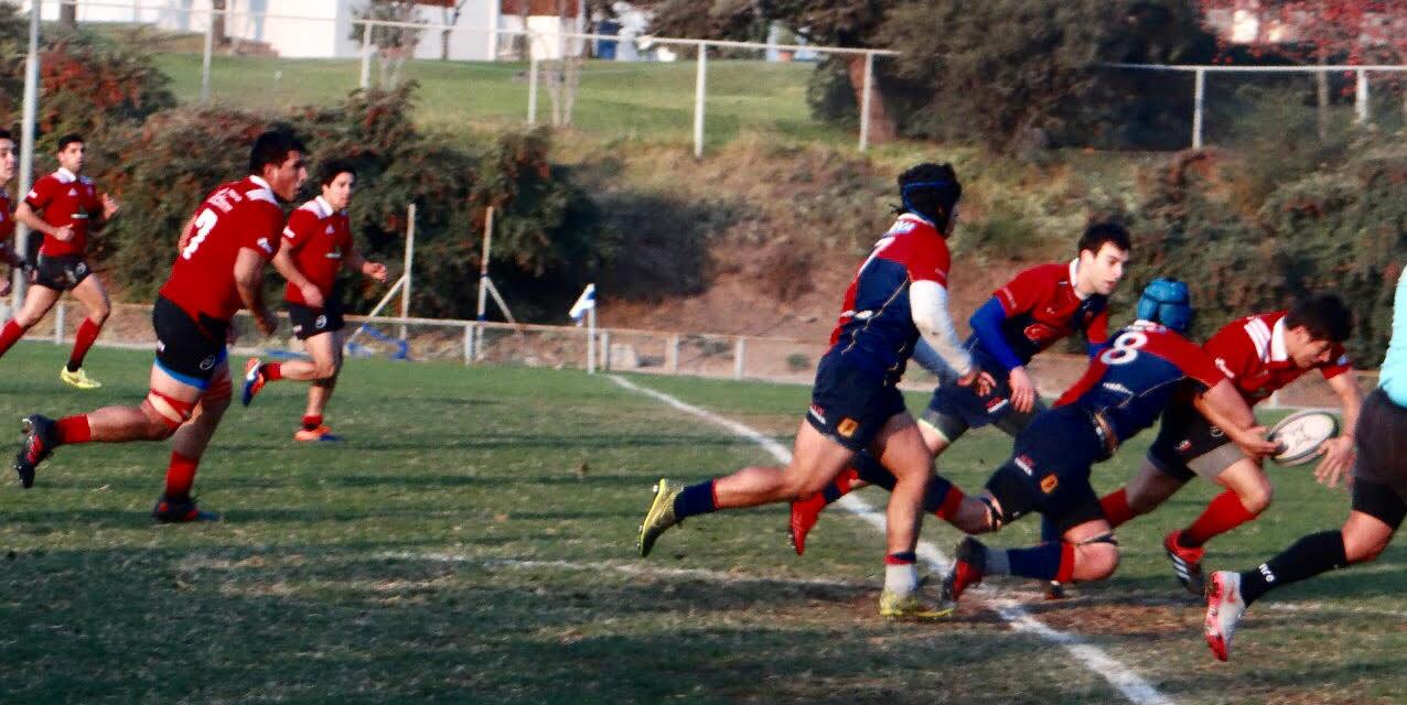 """Los Tordos van por la """"Copa de Oro"""" en rugby Arusa"""