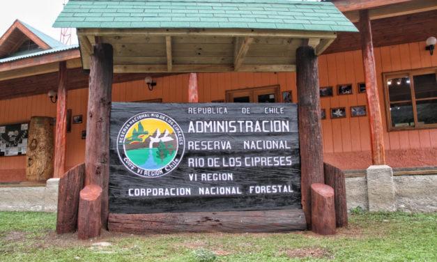 Reserva Nacional Río los Cipreses abrirá de forma gratuita este fin de semana