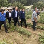 Decretan zona de emergencia agrícola en Machali y 9 comunas de O'Higgins
