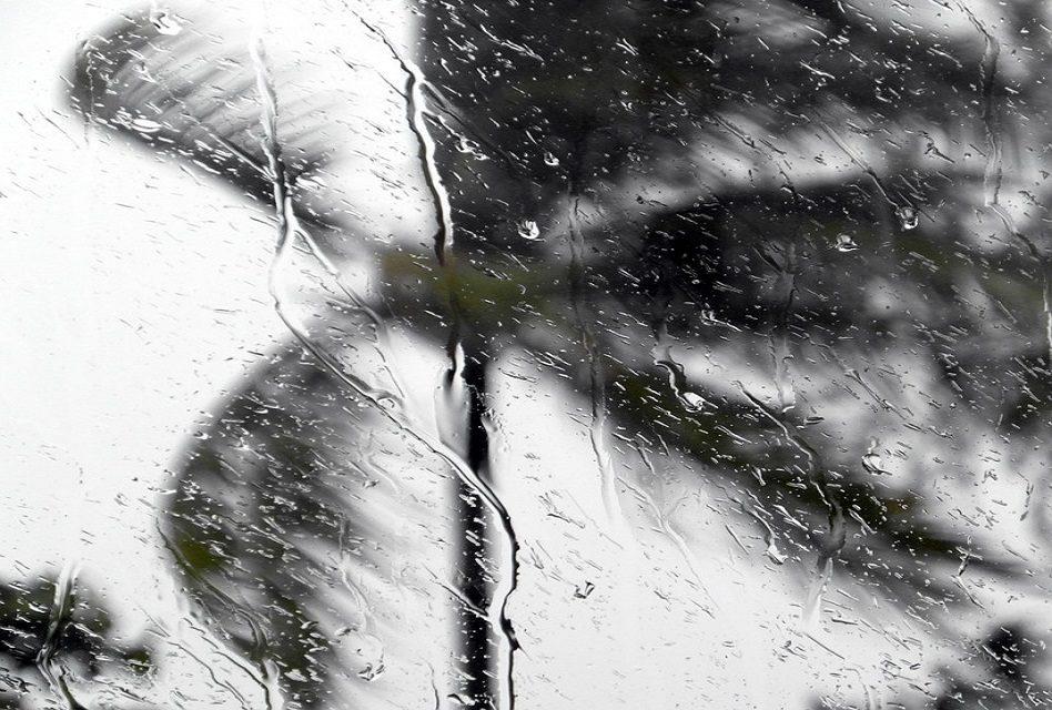 Declaran Alerta Temprana Preventiva para la Región de O'Higgins por vientos