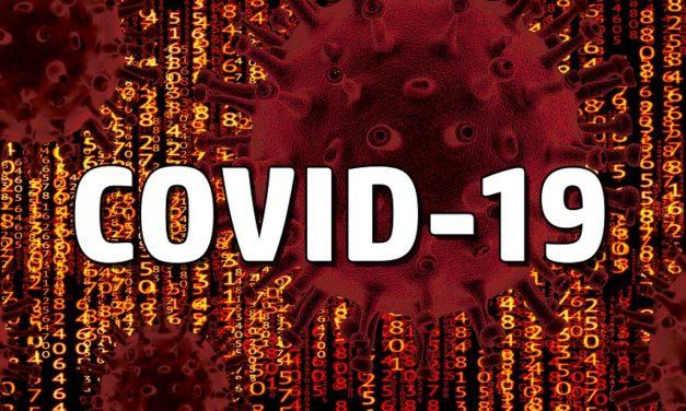 Baja en testeo: O´Higgins reportó 36 nuevos casos de coronavirus
