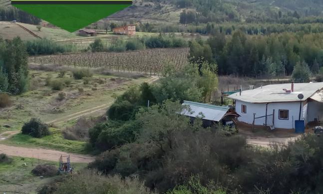 Machalino gana sorteo que rifó una parcela en Hualañé
