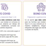Revisa cómo postular al nuevo Bono Covid