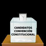 Listado de Candidaturas aceptadas para la Convención Constitucional